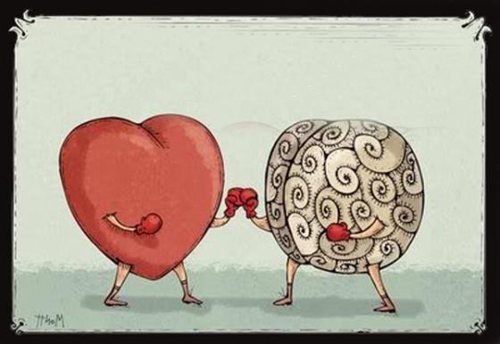 head-v-heart2